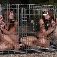 Soirée bdsm avec esclaves sexuelles a disposition
